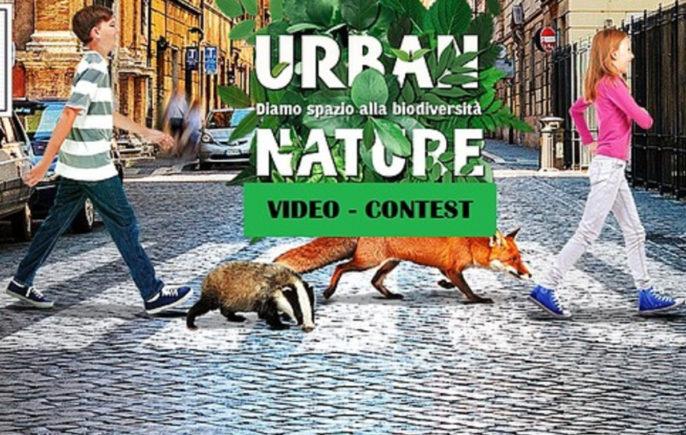 Urban Nature Concorso Video